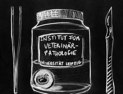 Cartoon-Logo des Instituts für Veterinär-Pathologie